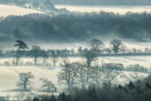 Sun rays breaking through the tress into a frosty Meon Valley. Featured as the January picture in the Meon Views calendar published by Studio 6, design and print, Wickham, Hampshire. All proceeds from the sale of this calendar go to Naomi House Childrens Hospice. If you are in (or passing) Wickham pop in and buy one or two!