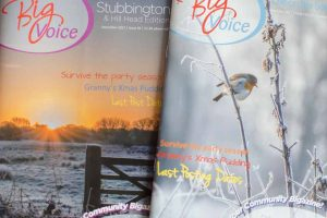 A couple of my photographs used on the cover of the Stubbington and Lee on the Solent editions of the Big Voice