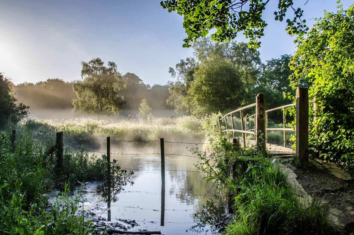River Meon near Droxford